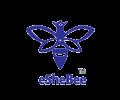 eSheBee-logo-1
